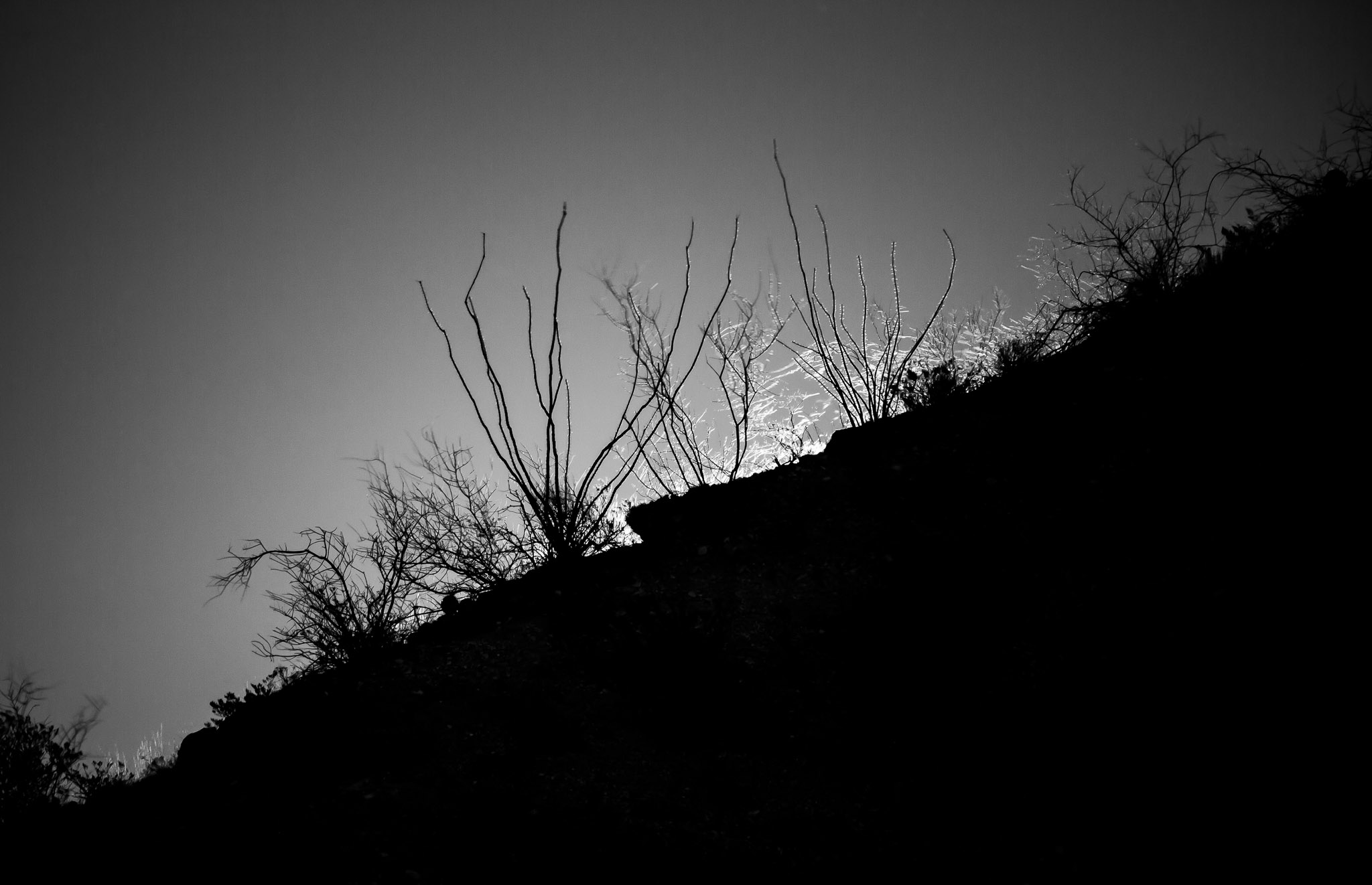 Moon rising behind the mountain, Caballo Lake State Park, Caballo NM, December 24, 2015